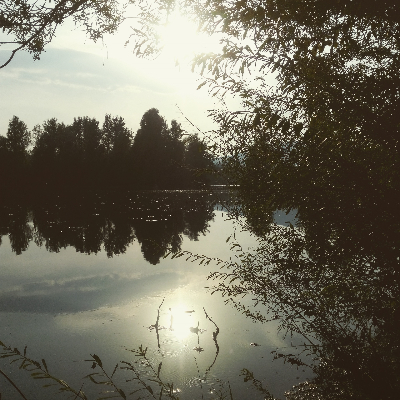 Jezero Divjak - Vrhnika.